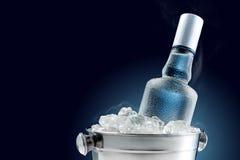 Botella de vodka fría en el cubo de hielo fotos de archivo libres de regalías