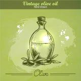 Botella del aceite de oliva del vintage con la rama de olivo Fotos de archivo libres de regalías