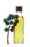 Botella del aceite de ricino Fotografía de archivo libre de regalías