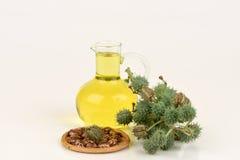 Botella del aceite de ricino con las frutas, las semillas y la hoja del echador foto de archivo libre de regalías