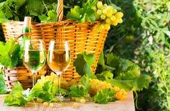 Botella del vino blanco, dos vidrios, manojo de uvas en cesta Fotos de archivo libres de regalías