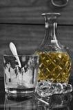 Botella e hielo Fotografía de archivo