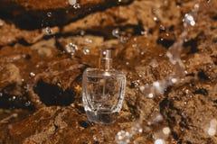 Botella elegante de perfume en el fondo de piedra fotografía de archivo libre de regalías