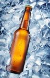 Botella fría de cerveza en los cubos de hielo imagen de archivo