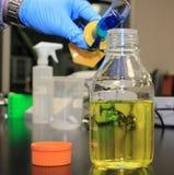 Botella graduada del cilindro y de la muestra Fotos de archivo