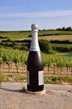 Botella grande Imagen de archivo libre de regalías