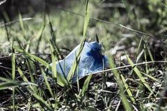 Botella plástica en la hierba Imagen de archivo