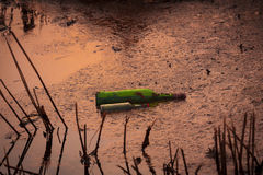 Botella verde que miente en la charca. Fotos de archivo libres de regalías