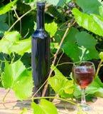 Botella y copa de vino contra un viñedo Foto de archivo