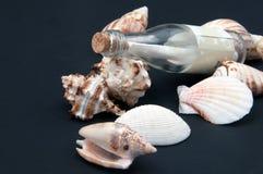 Botella y seashells imagen de archivo libre de regalías