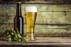 Botella y taza por completo de cerveza con el manojo de saltos en el fondo de madera fotos de archivo
