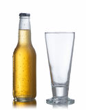 Botella y vidrio blancos de cerveza Fotografía de archivo