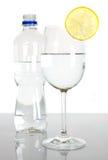 Botella y vidrio de agua con la rebanada del limón fotografía de archivo libre de regalías
