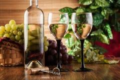 Botella y vidrios de vino blanco Fotografía de archivo libre de regalías