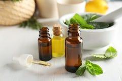 Botellas con aceite esencial de la menta Fotos de archivo
