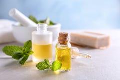 Botellas con aceite esencial de la menta Imagen de archivo libre de regalías