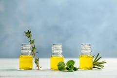 Botellas con aceites esenciales e hierbas frescas Fotos de archivo