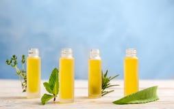 Botellas con aceites esenciales e hierbas frescas Imagenes de archivo
