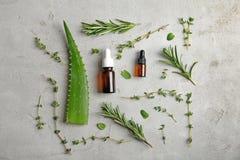 Botellas con aceites esenciales e hierbas frescas Imagen de archivo libre de regalías