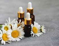 Botellas con aceites esenciales con las flores de la manzanilla Foto de archivo libre de regalías