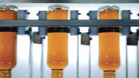 Botellas con alcohol en una cadena de producción del whisky almacen de video