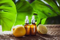 Botellas con el aceite de limón, fruta fresca entera y media en un natural Imagen de archivo