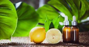 Botellas con el aceite de limón, fruta fresca entera y media en un natural Foto de archivo libre de regalías