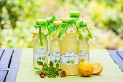 Botellas con el jarabe del bálsamo de limón Imágenes de archivo libres de regalías
