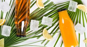 Botellas con la opinión superior del zumo y del hielo de fruta Imagen de archivo