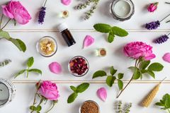 Botellas de aceite esencial con las rosas, la hierbabuena, la lavanda y el ot imagenes de archivo