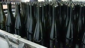 Botellas de alimentación al transportador para el embotellamiento adicional almacen de metraje de vídeo