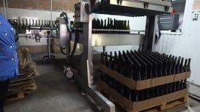Botellas de alimentaci?n al transportador para el embotellamiento adicional del vino almacen de video