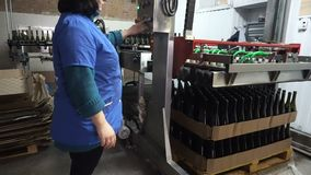 Botellas de alimentaci?n al transportador para el embotellamiento adicional del vino almacen de metraje de vídeo