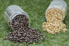Botellas de café Imagen de archivo libre de regalías
