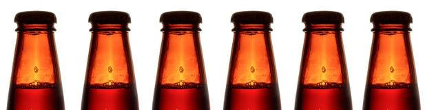 Botellas de cerveza Imagen de archivo libre de regalías