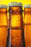Botellas de cerveza Fotografía de archivo