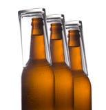 Botellas de cerveza aisladas en el fondo blanco, aún-vida del estudio Imágenes de archivo libres de regalías