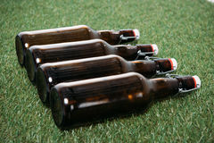 Botellas de cerveza cerradas que mienten en fila en hierba verde Fotografía de archivo libre de regalías