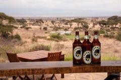 Botellas de cerveza de Tusker fotografía de archivo libre de regalías