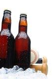 Botellas de cerveza del ángulo inferior dos con béisbol Imagen de archivo