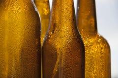 Botellas de cerveza del contraluz fotos de archivo