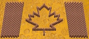 Botellas de cerveza del indicador de Canadá Fotos de archivo