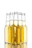 Botellas de cerveza en blanco Imagen de archivo libre de regalías