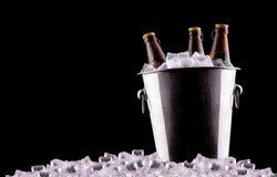 Botellas de cerveza en cubo de hielo fotos de archivo libres de regalías