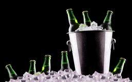 Botellas de cerveza en cubo de hielo fotografía de archivo libre de regalías