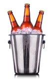 Botellas de cerveza en cubo de hielo en blanco imágenes de archivo libres de regalías