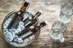 Botellas de cerveza en cubos de hielo foto de archivo libre de regalías