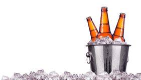 Botellas de cerveza en el cubo de hielo aislado Fotos de archivo