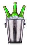 Botellas de cerveza en el cubo de hielo aislado en blanco foto de archivo libre de regalías