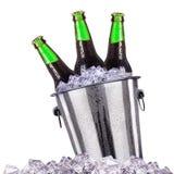 Botellas de cerveza en el cubo de hielo aislado en blanco fotografía de archivo